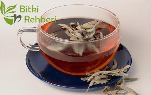 Ada Çayı Faydaları