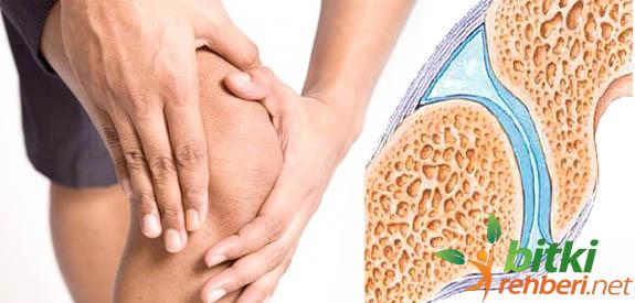 Dizlerde Sıvı Kaybı Bitkisel Tedavi