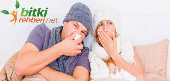 Soğuk Algınlığı İçin Öneriler