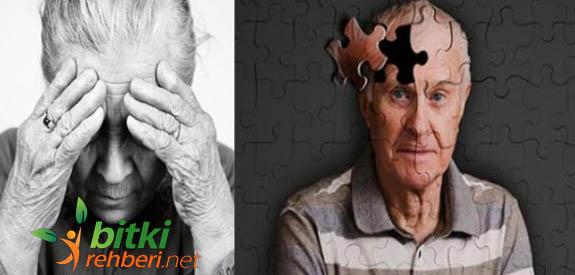 Alzheimer Bitkisel Tedavi