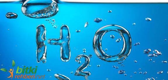 Alkali Diyet ve Alkali Su