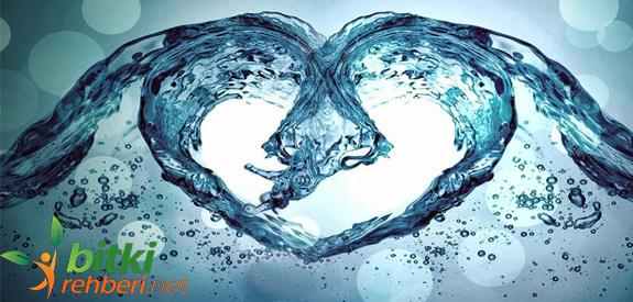 Alkali Su ile Nasıl Diyet Yapılır