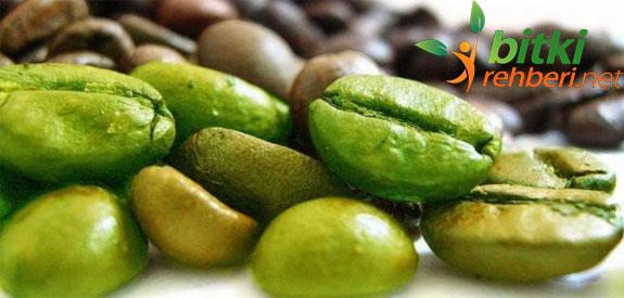 Yeşil Kahve ile Zayıflayın